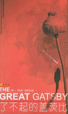 了不起的盖茨比-免费小说下载