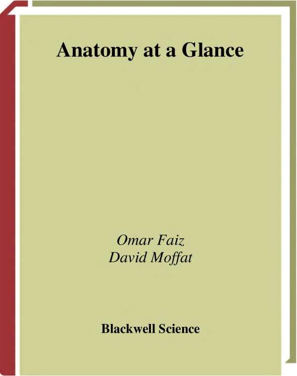 Anatomy At a Glance-免费小说下载