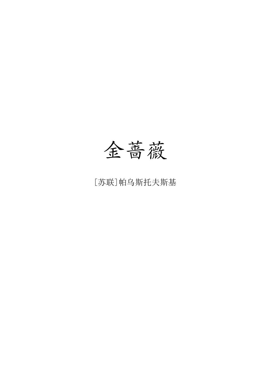 金蔷薇-免费小说下载