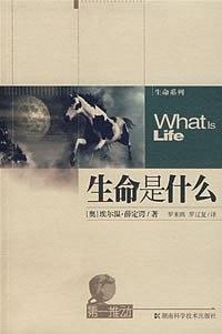 生命是什么-免费小说下载