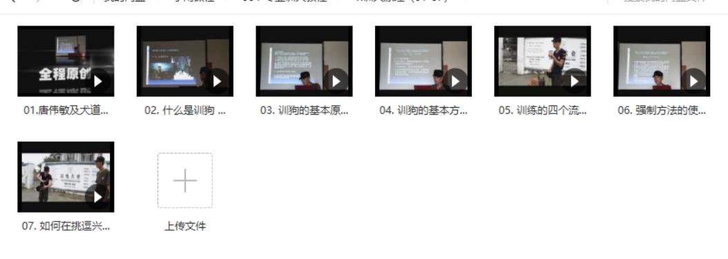 训狗教程:如何训练狗狗握手、坐、站、大小便视频图书教程