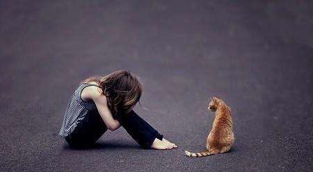 心理课程:反脆弱塑造强大内心,克服自卑,走向成熟